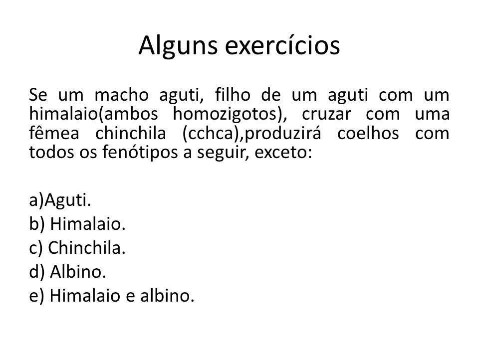 Alguns exercícios