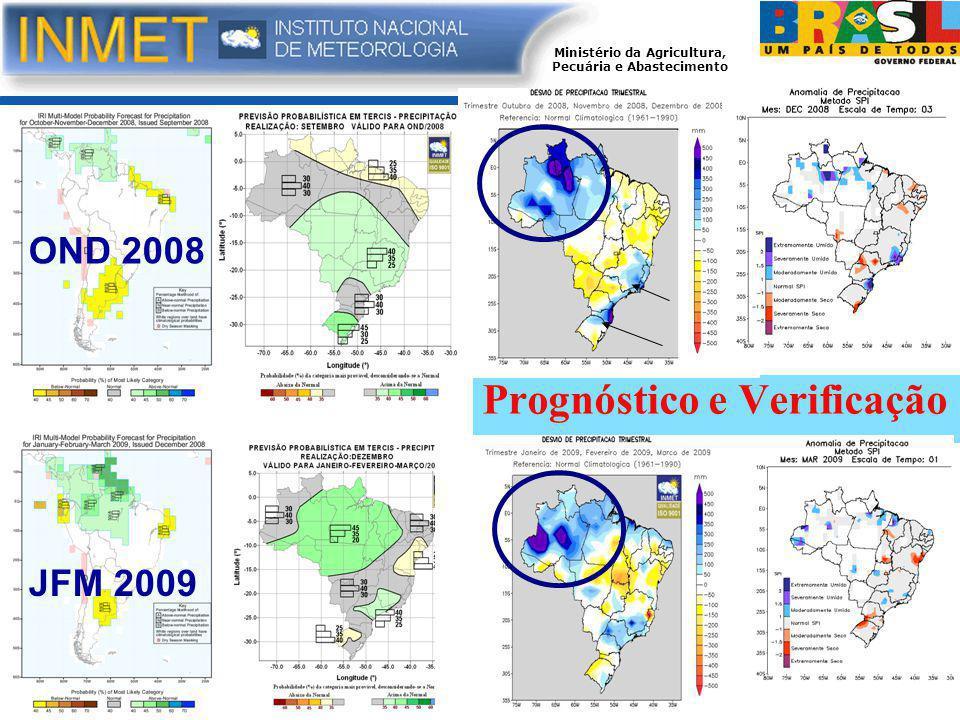 Prognóstico e Verificação