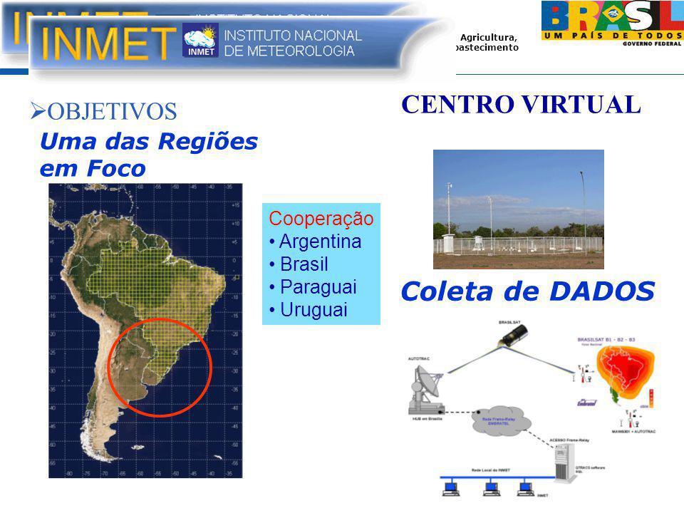 CENTRO VIRTUAL Coleta de DADOS OBJETIVOS Uma das Regiões em Foco