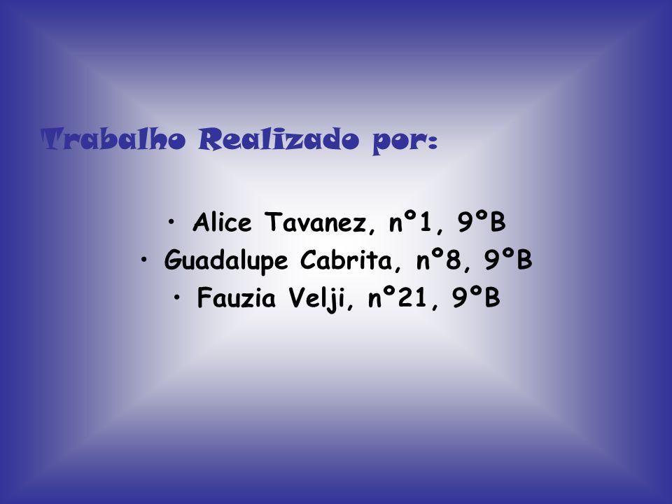 Guadalupe Cabrita, nº8, 9ºB