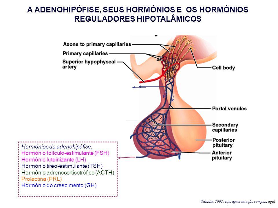 A ADENOHIPÓFISE, SEUS HORMÔNIOS E OS HORMÔNIOS REGULADORES HIPOTALÂMICOS
