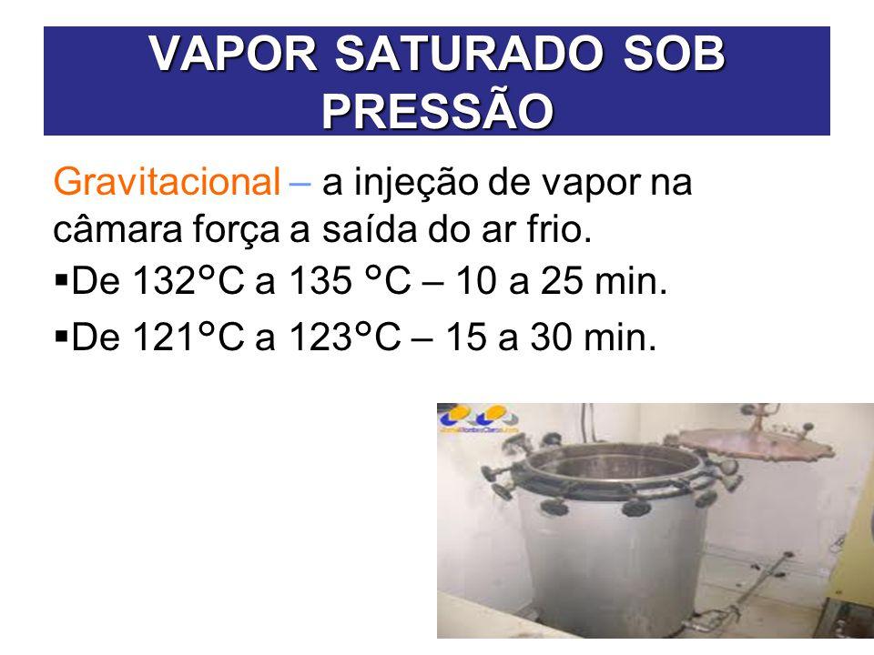 VAPOR SATURADO SOB PRESSÃO
