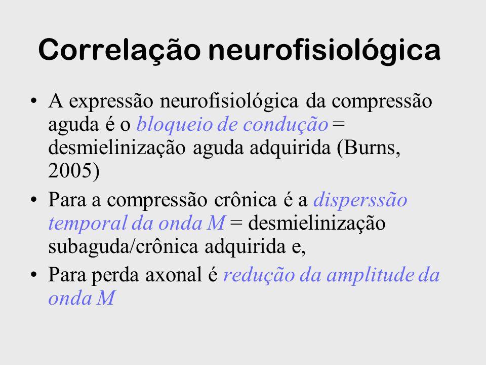 Correlação neurofisiológica