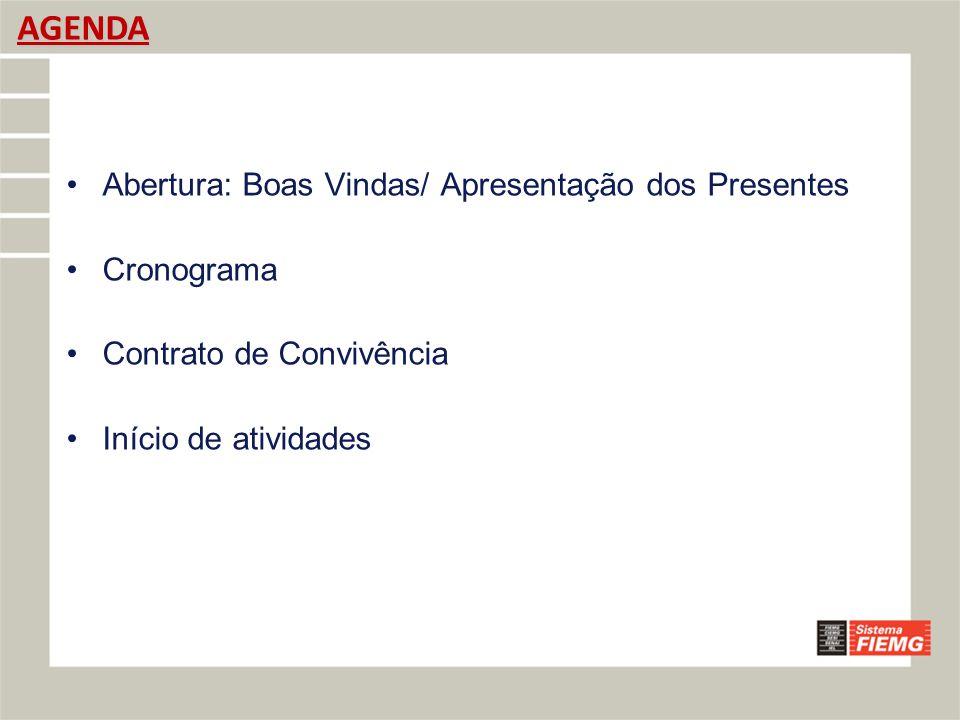 AGENDA Abertura: Boas Vindas/ Apresentação dos Presentes Cronograma