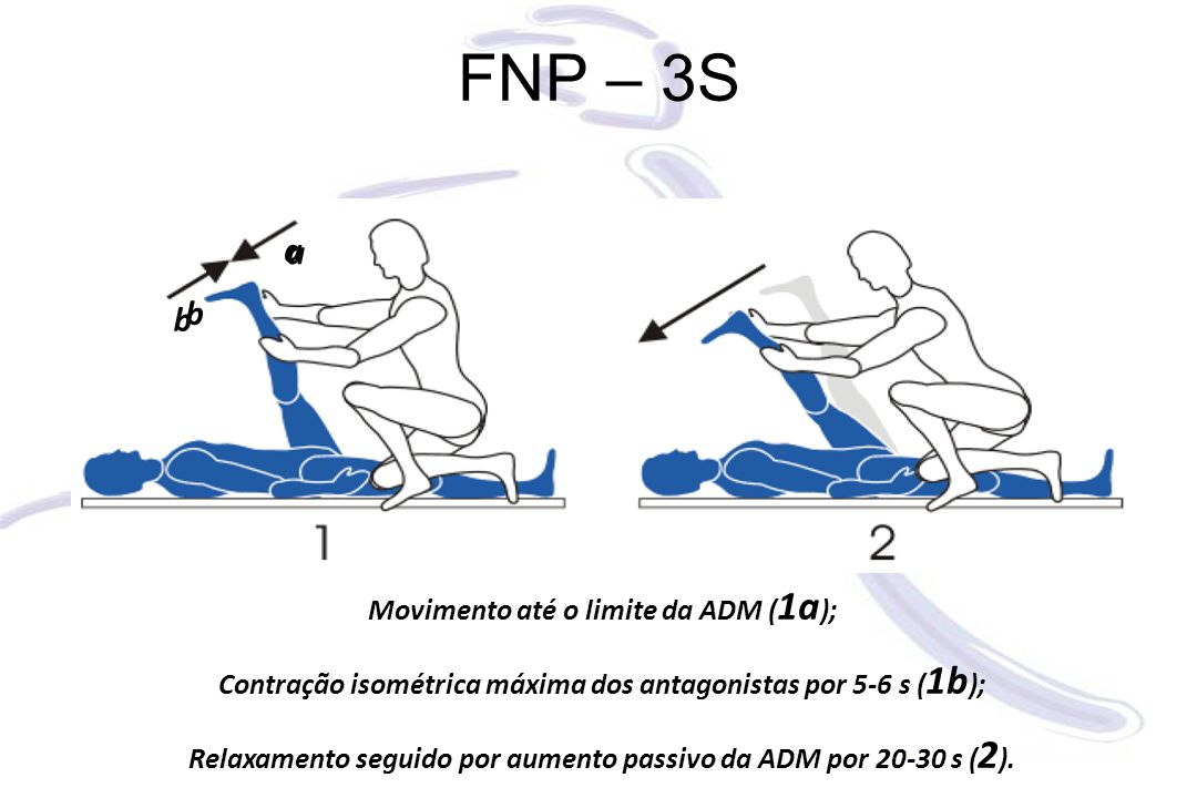 FNP – 3S a a b b Movimento até o limite da ADM (1a);