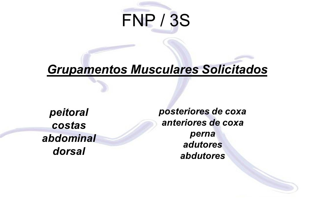 Grupamentos Musculares Solicitados