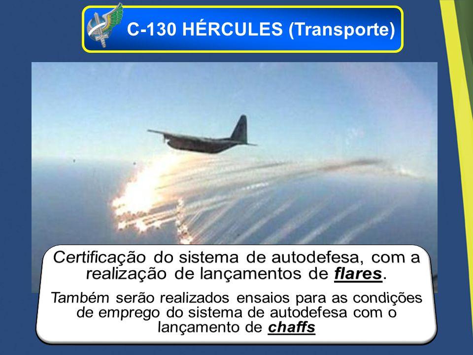 C-130 HÉRCULES (Transporte)