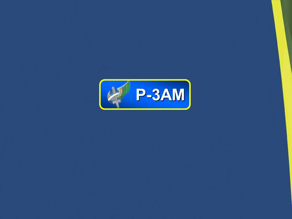 P-3AM 19