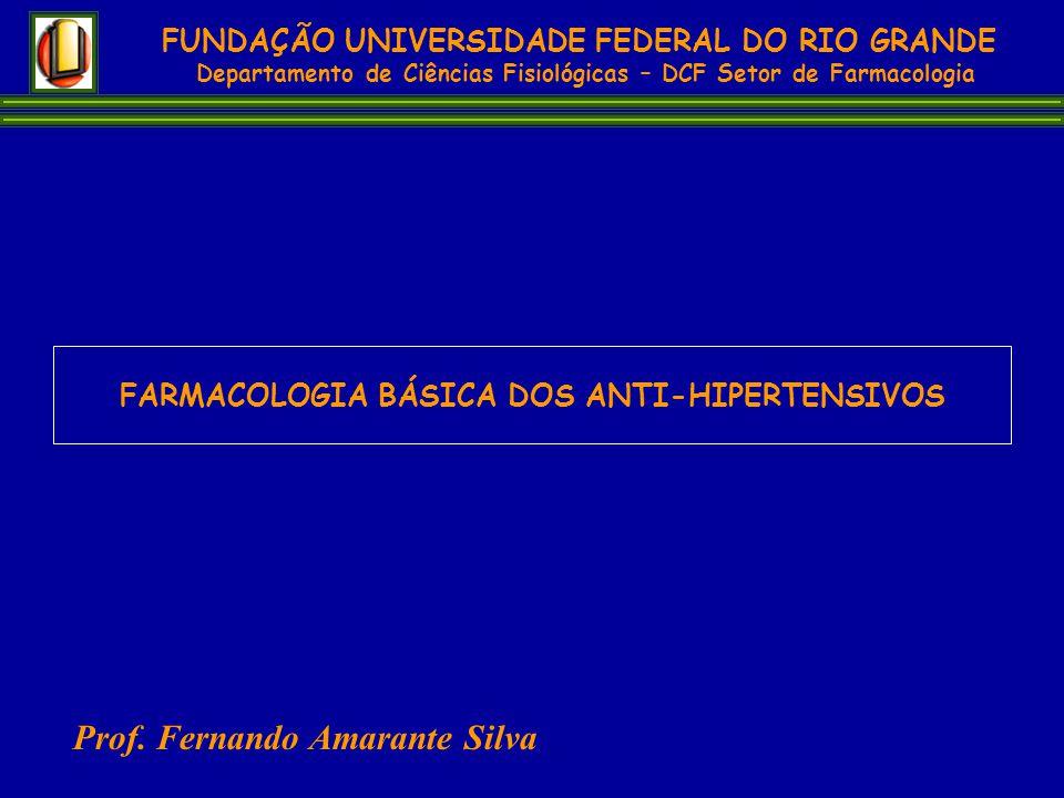 Prof. Fernando Amarante Silva
