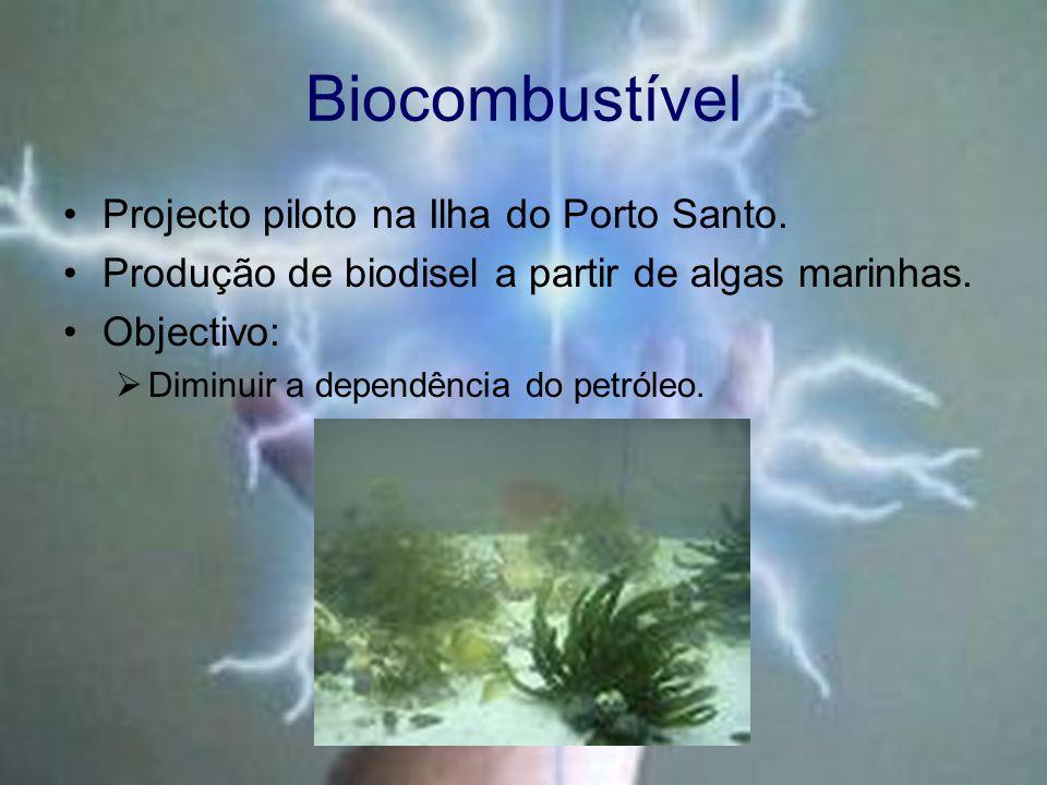 Biocombustível Projecto piloto na Ilha do Porto Santo.
