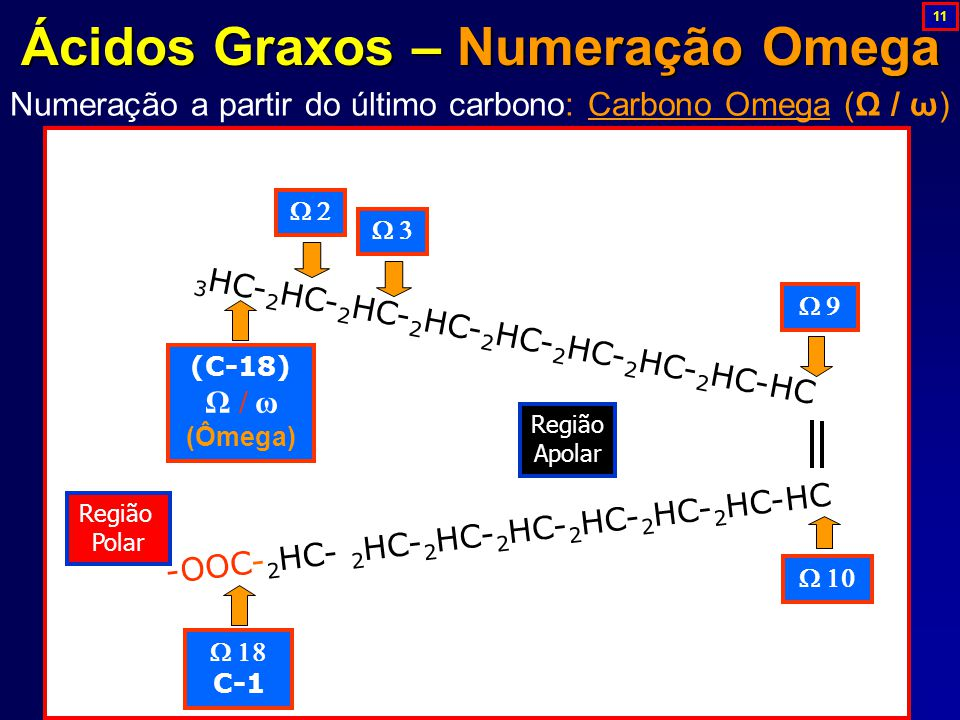 Ácidos Graxos – Numeração Omega
