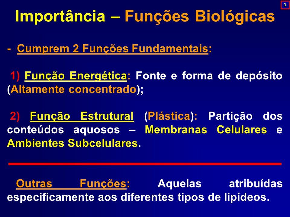 Importância – Funções Biológicas