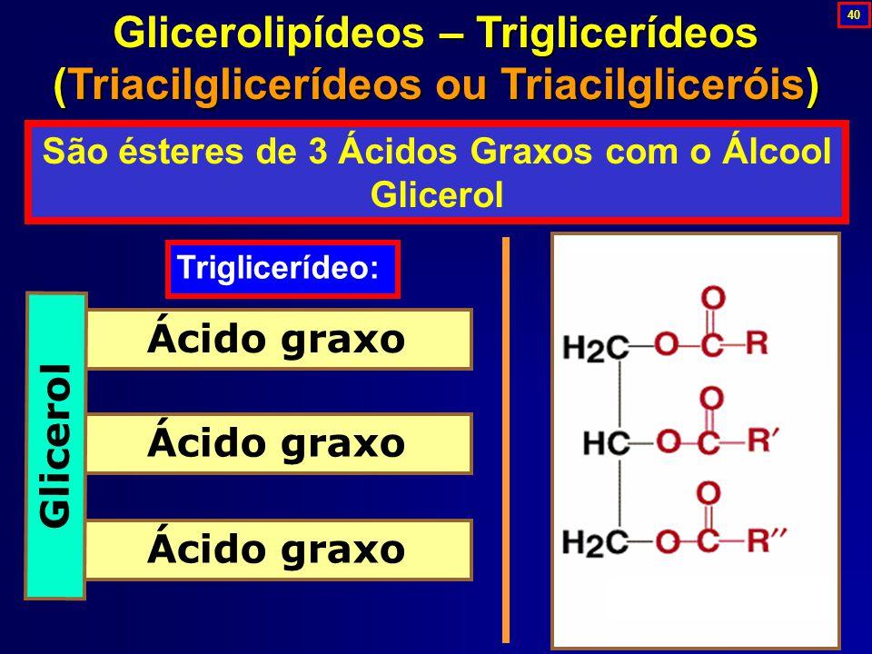 São ésteres de 3 Ácidos Graxos com o Álcool Glicerol
