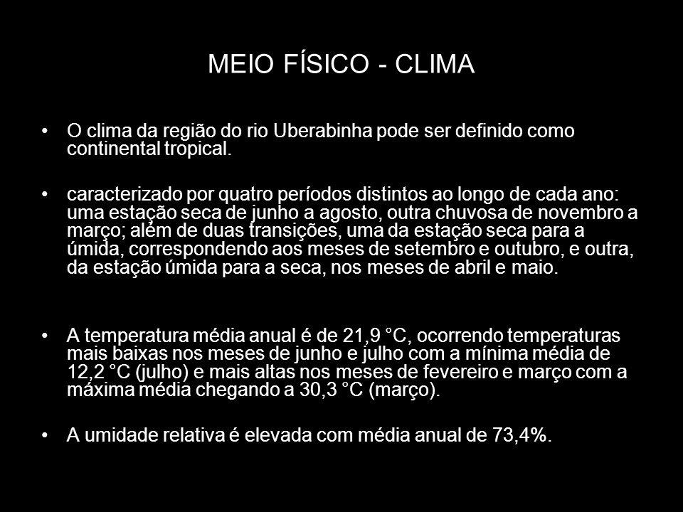 MEIO FÍSICO - CLIMA O clima da região do rio Uberabinha pode ser definido como continental tropical.