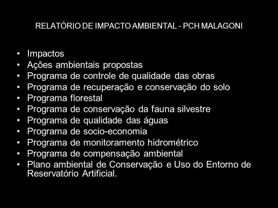 RELATÓRIO DE IMPACTO AMBIENTAL - PCH MALAGONI