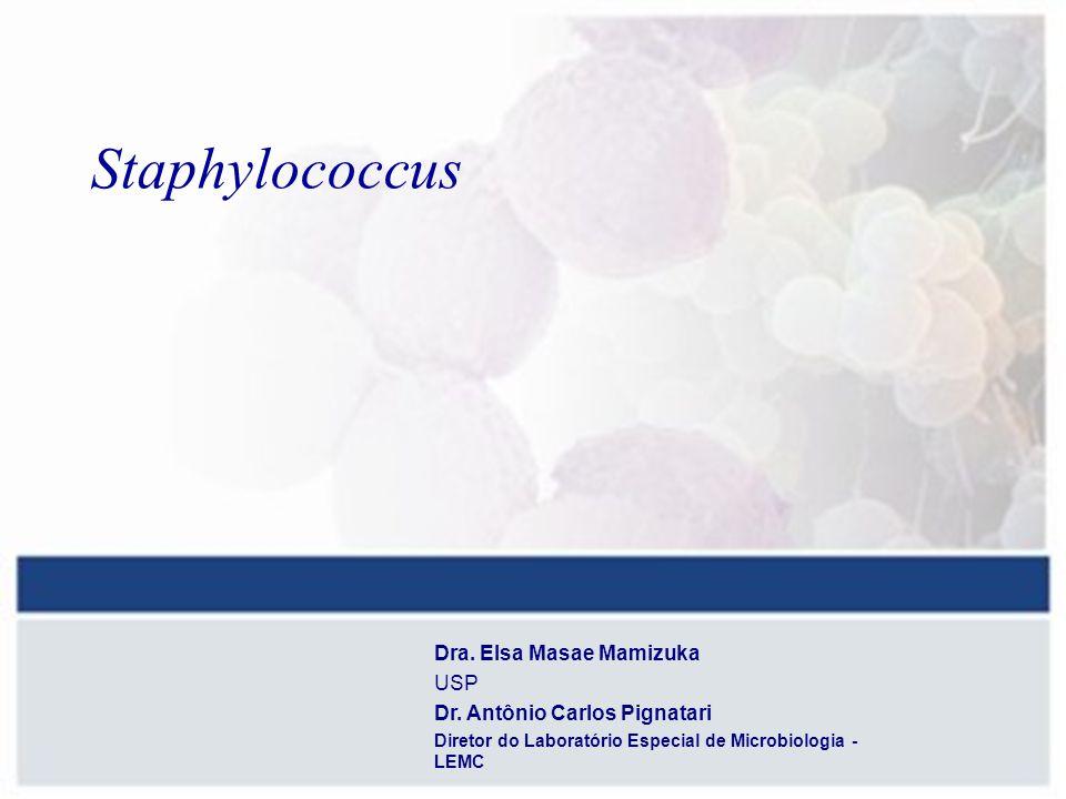 Staphylococcus Dra. Elsa Masae Mamizuka USP