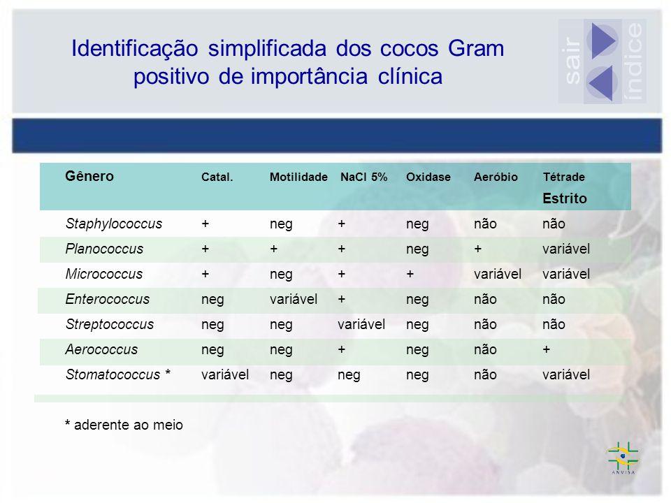 Identificação simplificada dos cocos Gram positivo de importância clínica