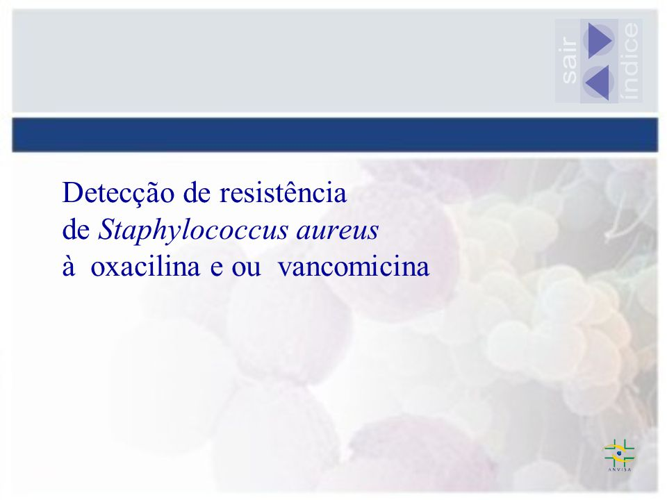 sair índice Detecção de resistência de Staphylococcus aureus à oxacilina e ou vancomicina