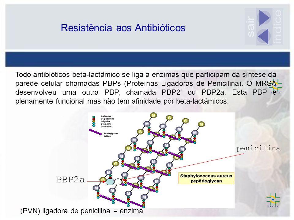 Resistência aos Antibióticos