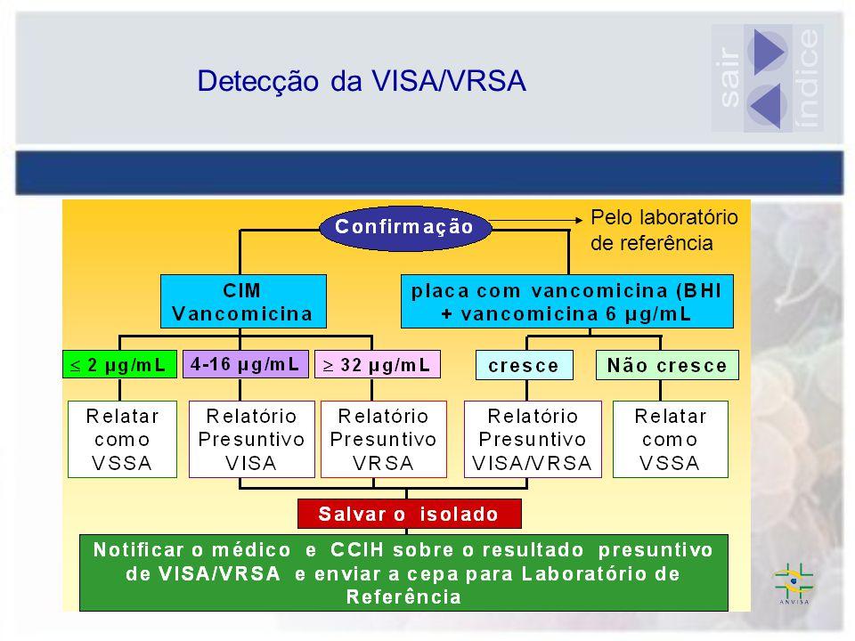 Detecção da VISA/VRSA sair índice Pelo laboratório de referência