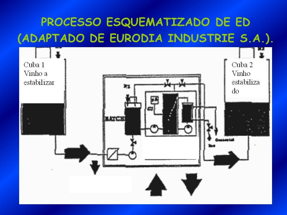 PROCESSO ESQUEMATIZADO DE ED (ADAPTADO DE EURODIA INDUSTRIE S.A.).
