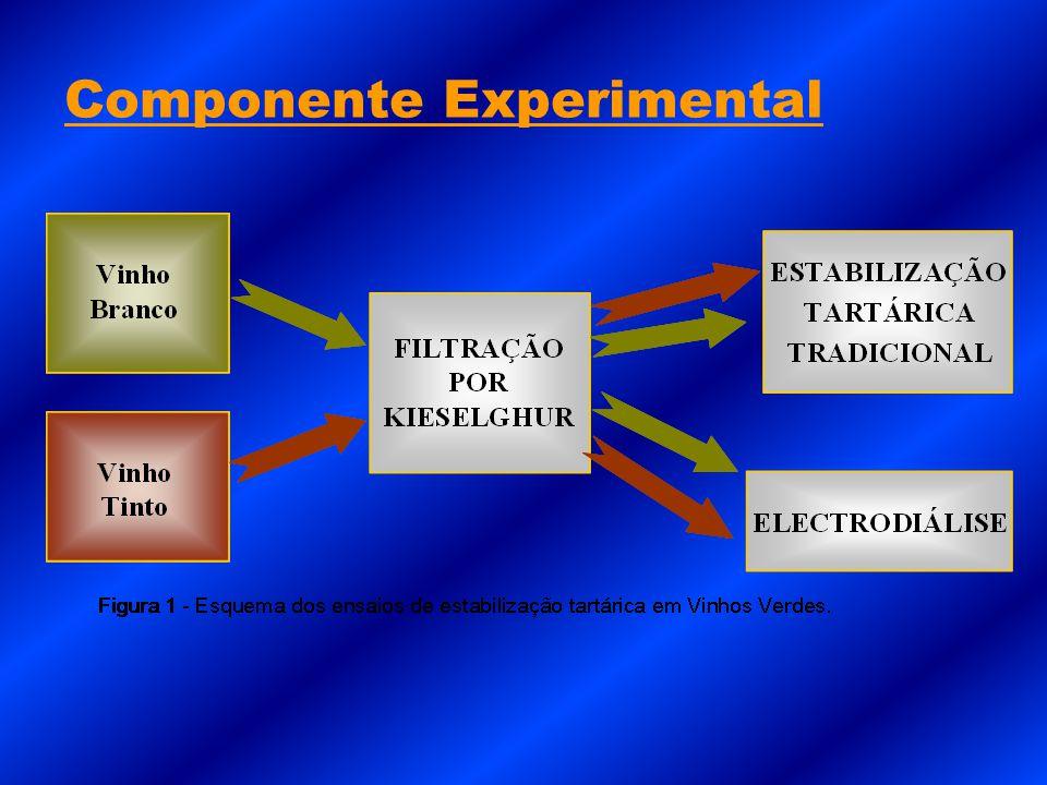Componente Experimental