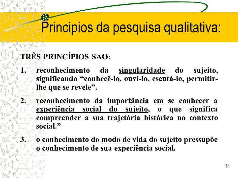 Principios da pesquisa qualitativa: