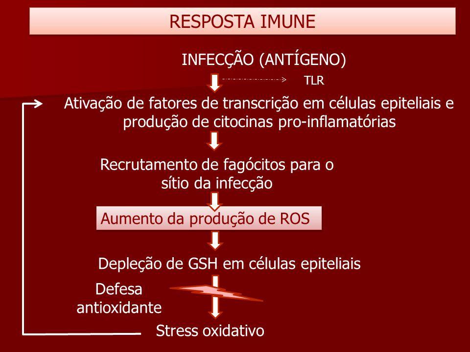 Recrutamento de fagócitos para o sítio da infecção