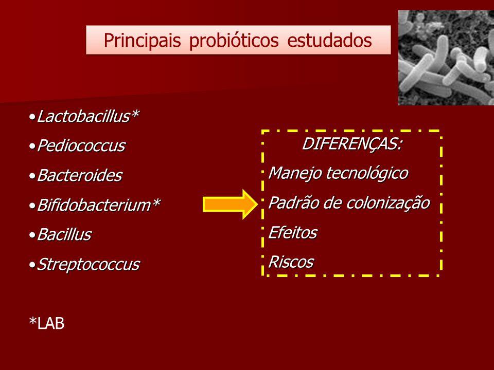 Principais probióticos estudados