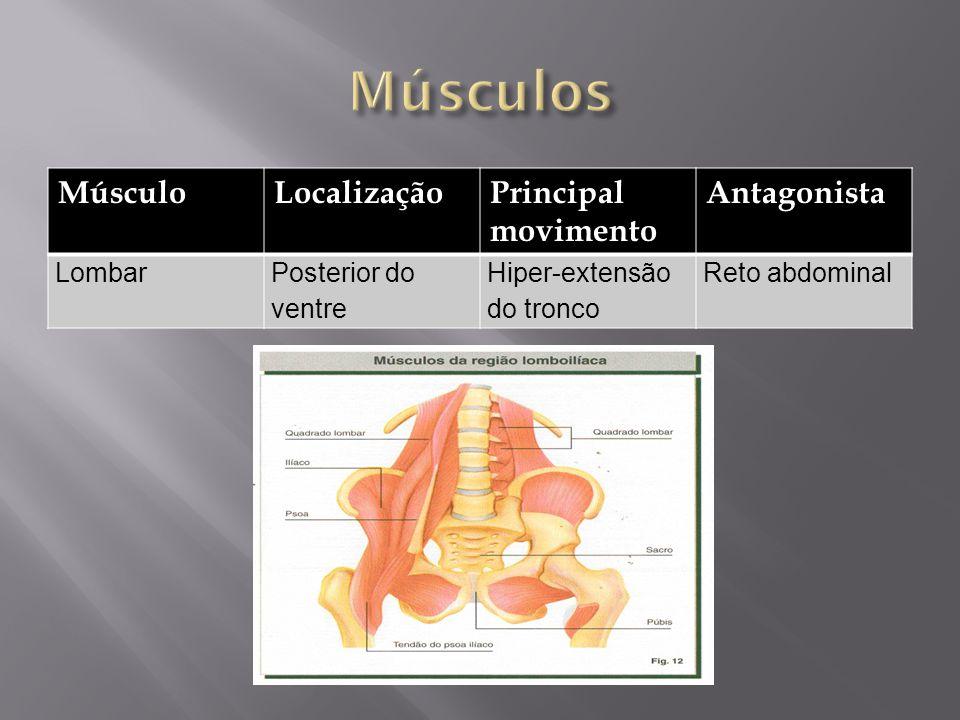 Músculos Músculo Localização Principal movimento Antagonista Lombar