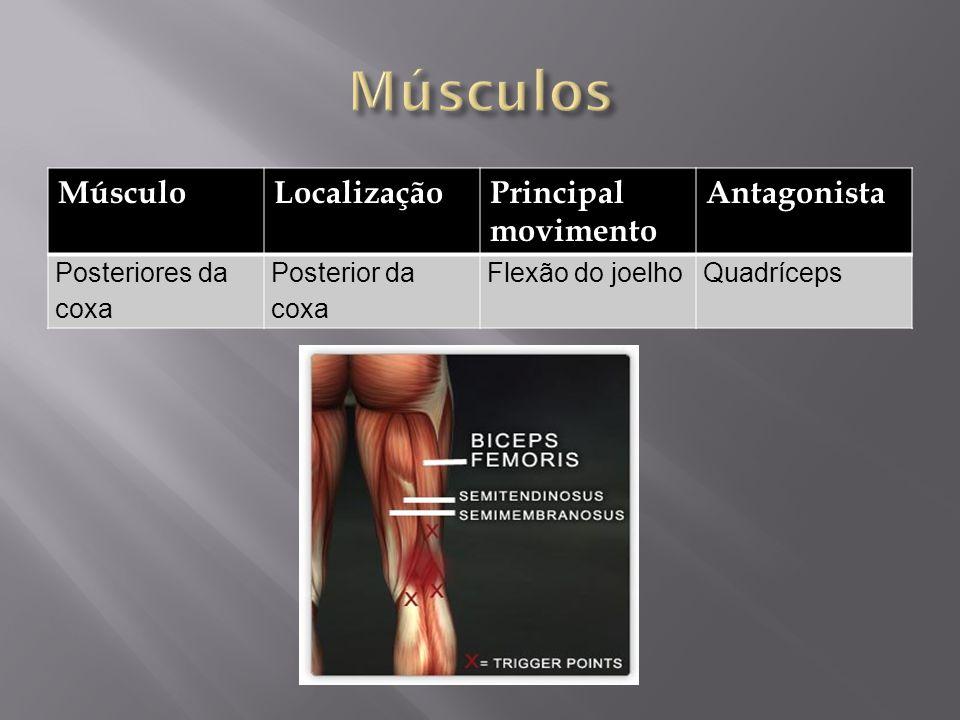 Músculos Músculo Localização Principal movimento Antagonista
