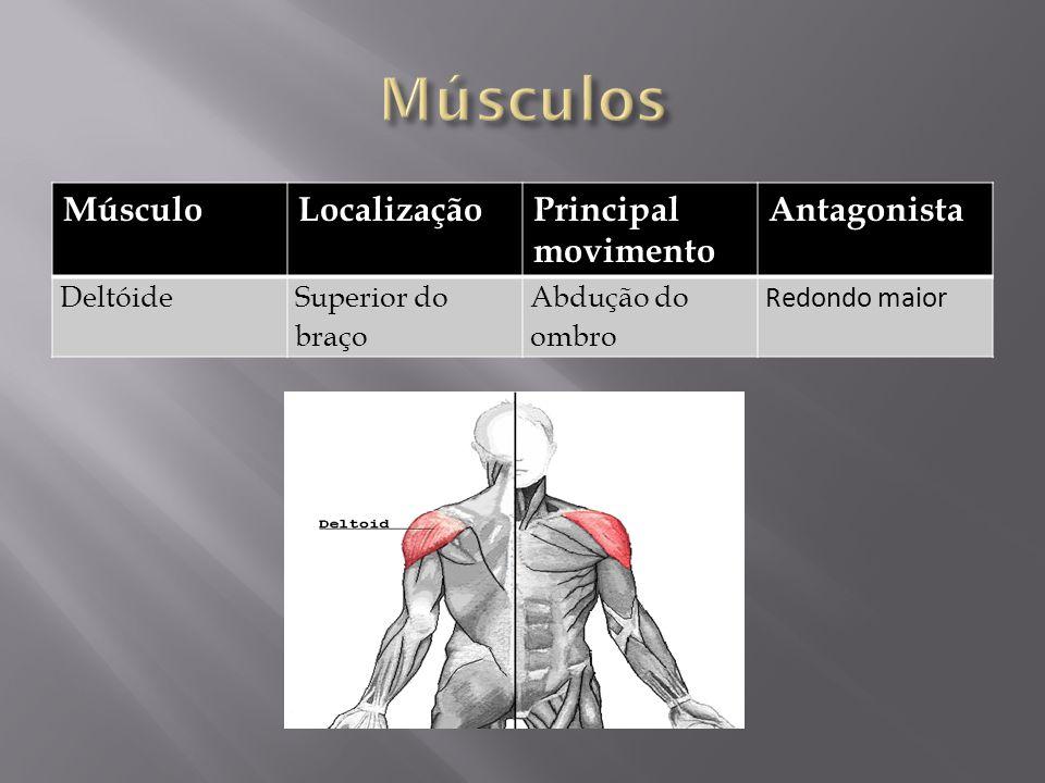 Músculos Músculo Localização Principal movimento Antagonista Deltóide