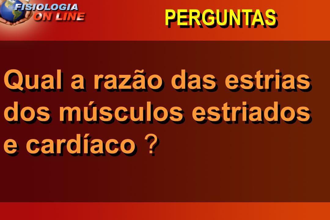 Qual a razão das estrias dos músculos estriados e cardíaco