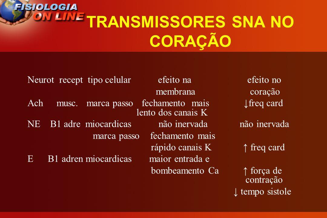 TRANSMISSORES SNA NO CORAÇÃO