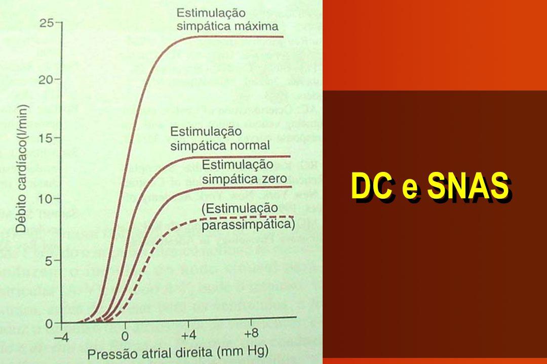 DC e SNAS