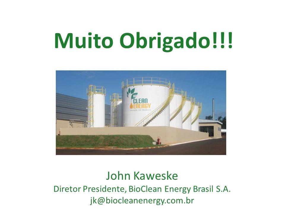 Diretor Presidente, BioClean Energy Brasil S.A.