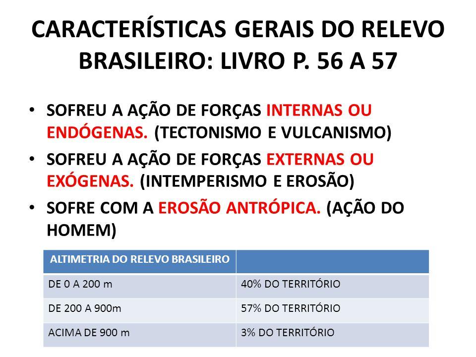 CARACTERÍSTICAS GERAIS DO RELEVO BRASILEIRO: LIVRO P. 56 A 57