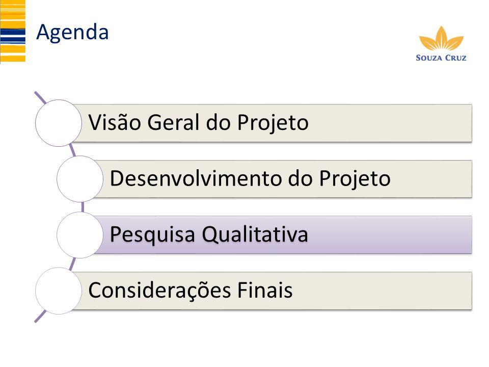 Agenda Visão Geral do Projeto Desenvolvimento do Projeto