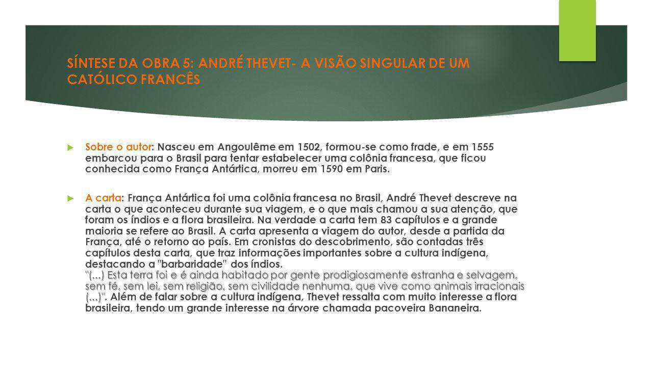 SÍNTESE DA OBRA 5: ANDRÉ THEVET- A VISÃO SINGULAR DE UM CATÓLICO FRANCÊS