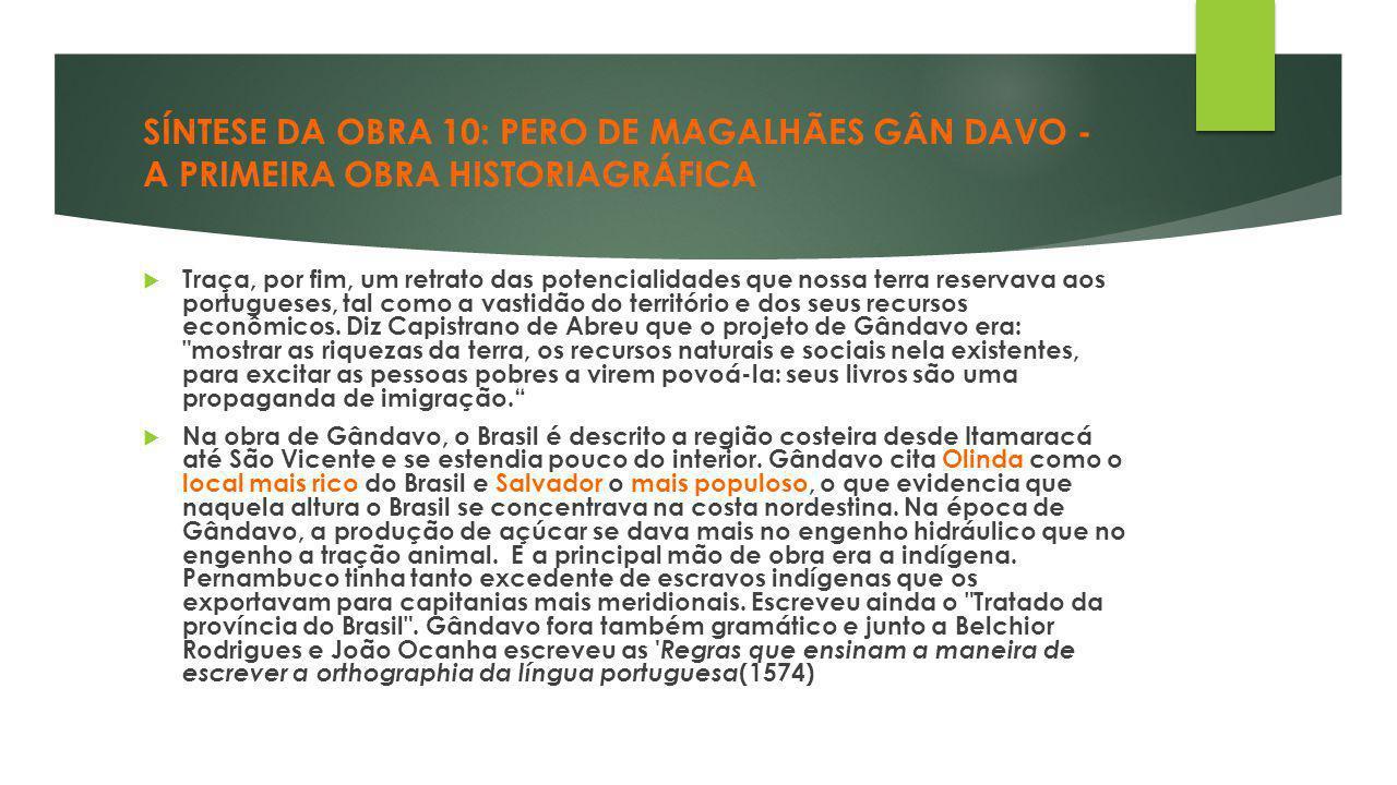 SÍNTESE DA OBRA 10: PERO DE MAGALHÃES GÂN DAVO - A PRIMEIRA OBRA HISTORIAGRÁFICA