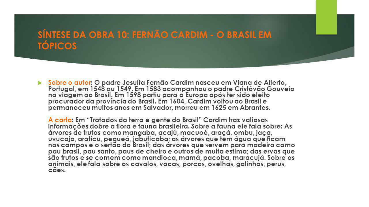 SÍNTESE DA OBRA 10: FERNÃO CARDIM - O BRASIL EM TÓPICOS