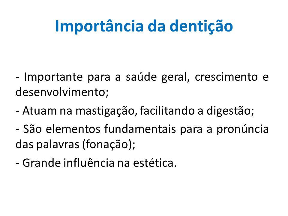 Importância da dentição
