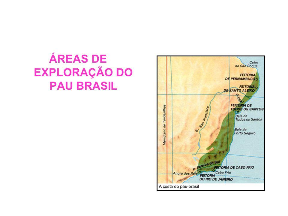 ÁREAS DE EXPLORAÇÃO DO PAU BRASIL