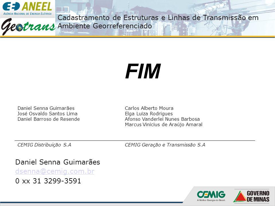 FIM Daniel Senna Guimarães dsenna@cemig.com.br 0 xx 31 3299-3591