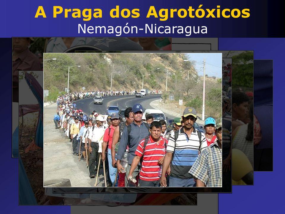 A Praga dos Agrotóxicos Nemagón-Nicaragua