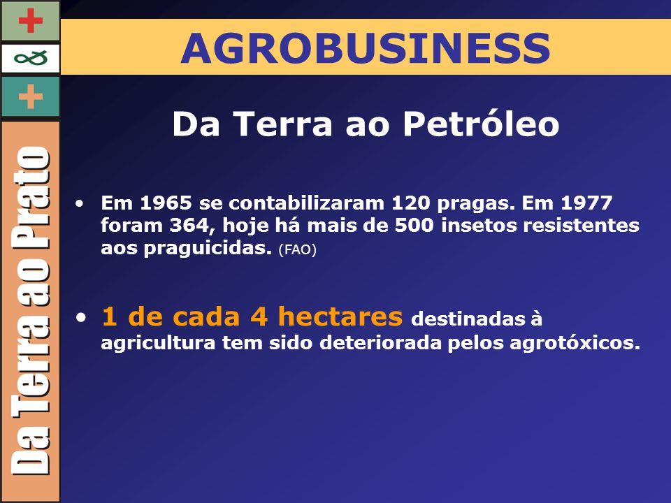AGROBUSINESS Da Terra ao Petróleo