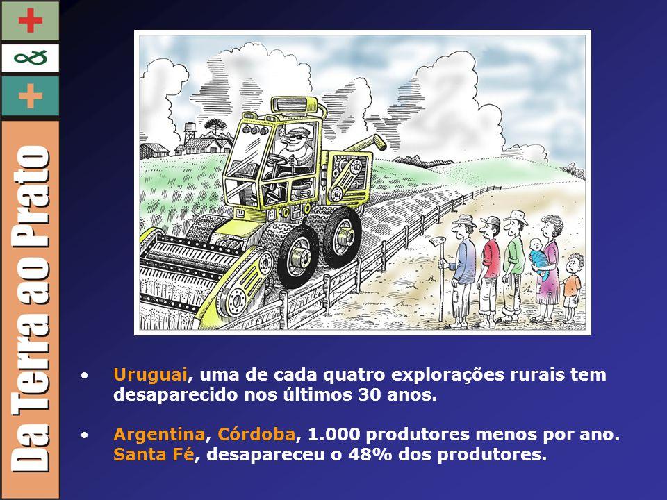 Uruguai, uma de cada quatro explorações rurais tem desaparecido nos últimos 30 anos.