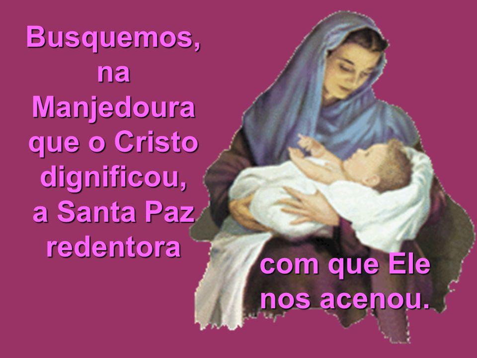 Busquemos, na Manjedoura que o Cristo dignificou,