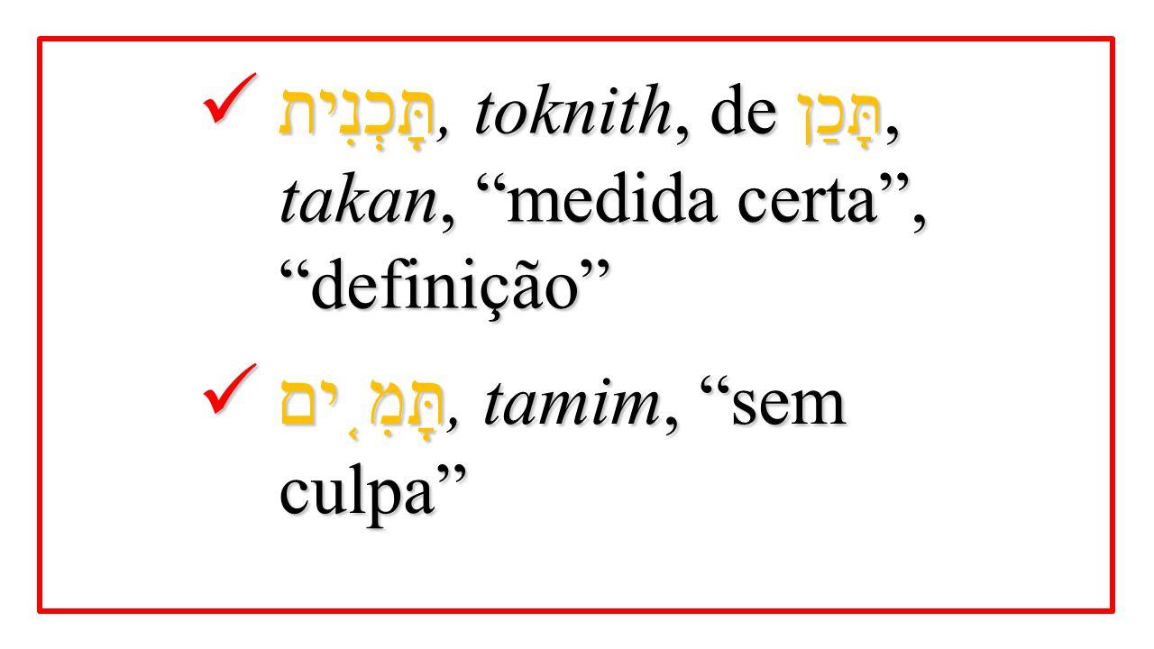 תָּכְנִית, toknith, de תָּכַן, takan, medida certa , definição