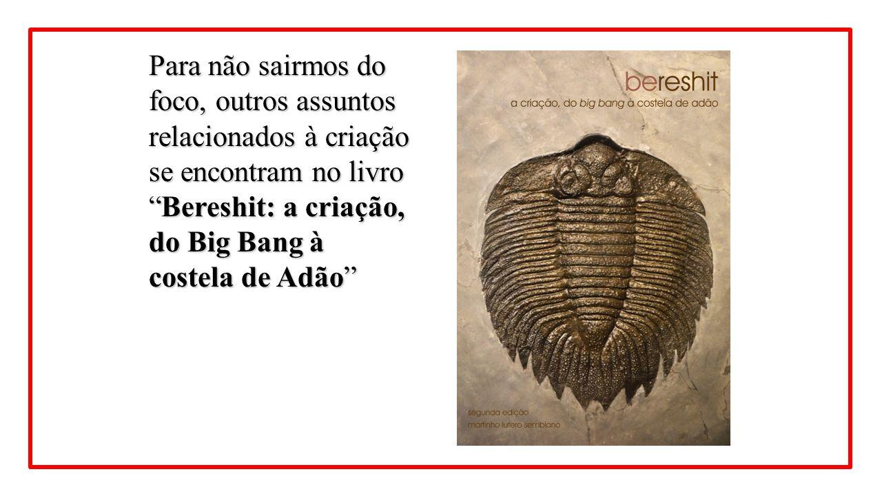 Para não sairmos do foco, outros assuntos relacionados à criação se encontram no livro Bereshit: a criação, do Big Bang à costela de Adão